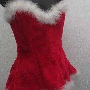 Christmas Costume/Dress